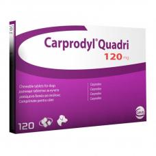 カルプロダイル(カルプロフェン120mg)120錠