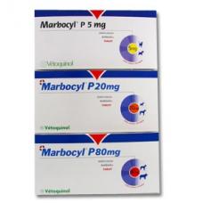 マルボシル(マルボフロサキシン80mg)100錠
