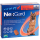 ネクスガードスペクトラ(超大型犬30-60kg用)6錠