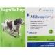 ミルベマイシンA小型犬用6錠(5-10kg)