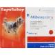 ミルベマイシンA超小型犬用6錠(2.5-5kg)
